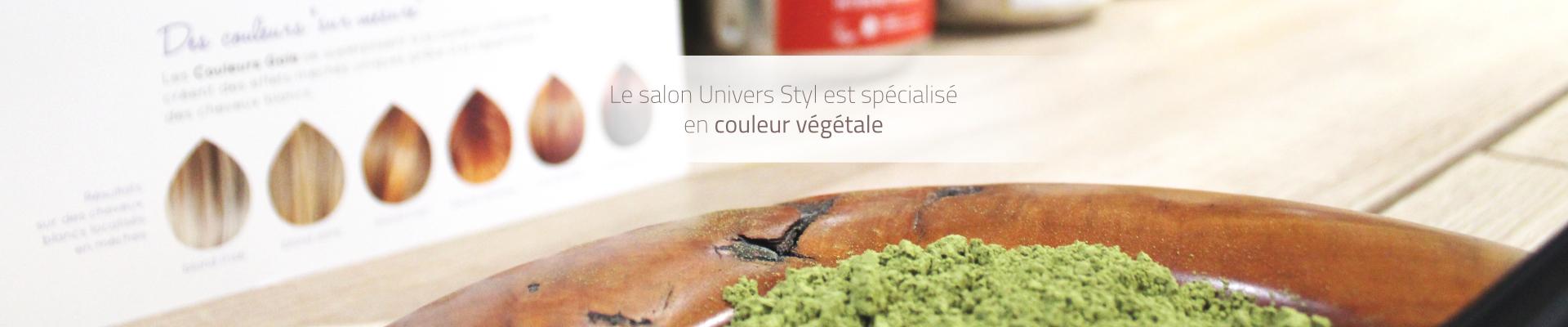 Bannière Salon Univers Styl couleur végétale