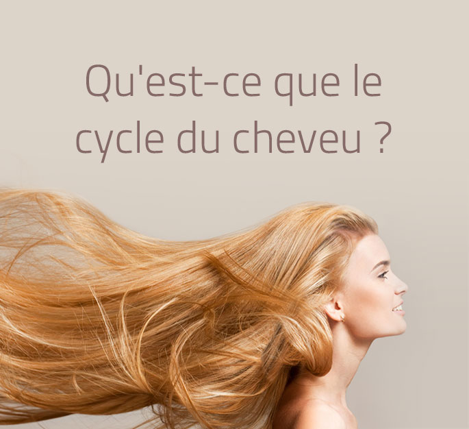 Le cycle de vie du cheveu